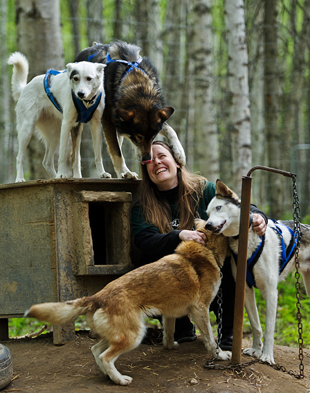 Sled Dog Sanctuary