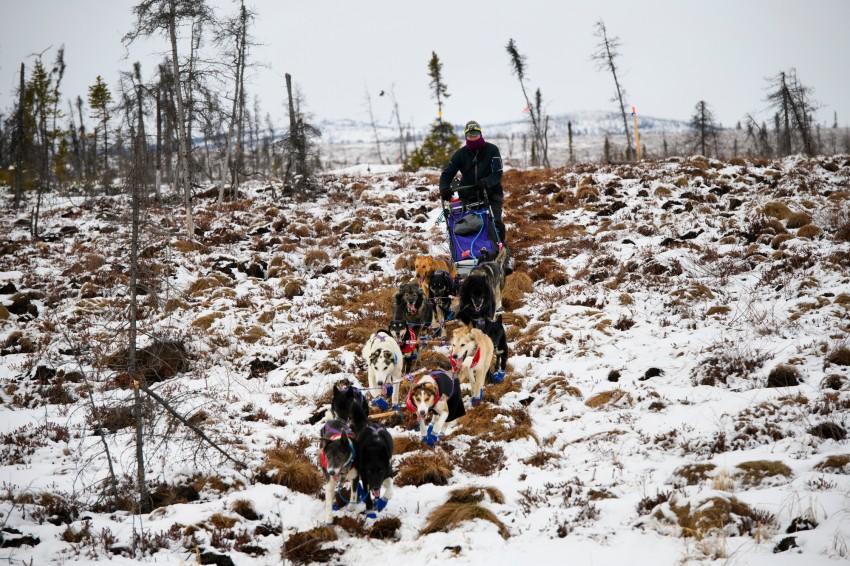 Iditarod 2019, Iditarod Trail Sled Dog Race, Iditarod checkpoint
