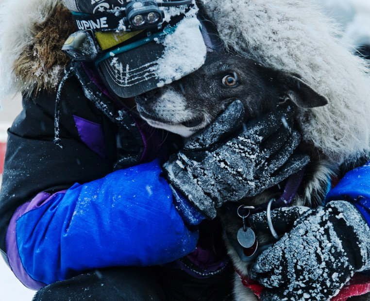 Iditarod, Iditarod Trail Sled Dog Race, Nome, Jessie Royer